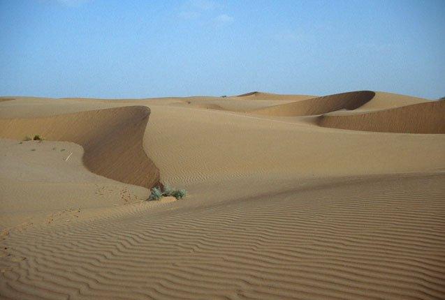 las bellas dunas del desierto de Thar