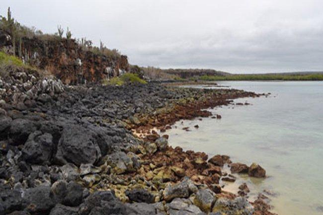 Santa Cruz, la perla de las Islas Galapagos, Ecuador