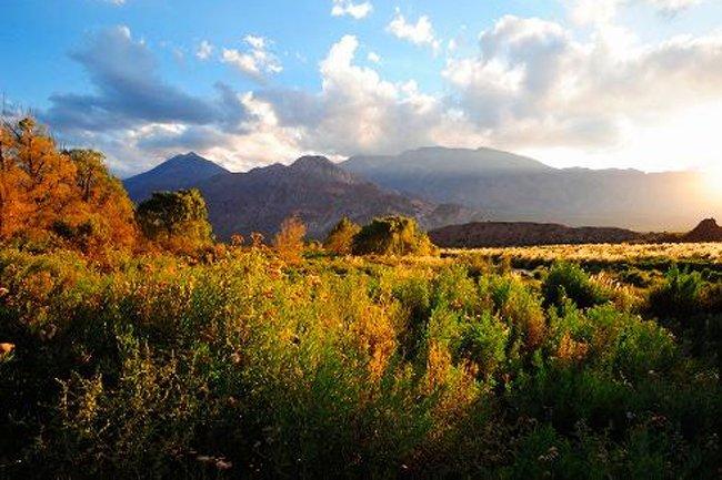 3c39be39ae1d Webcam desde Mendoza