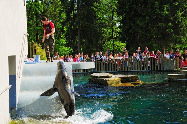 Eslovenia_Zoo