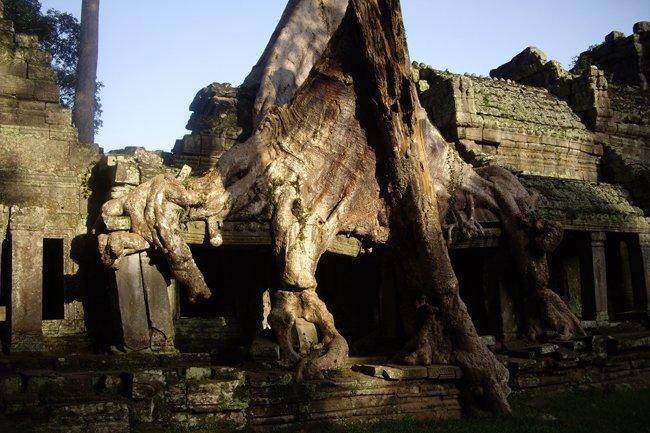 new style 31a00 9b643 Bayon y Angkor Wat son las dos joyas de un conjunto que es una corona en si  mismo.
