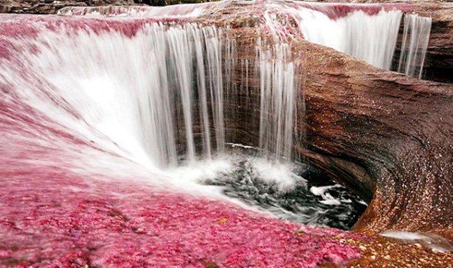 Poza en el Río Caño Cristales, Colombia