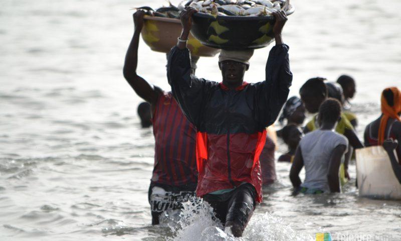 Quienes transportan las canastas desde las barcas llevan hasta 30 kilos sobre la cabeza