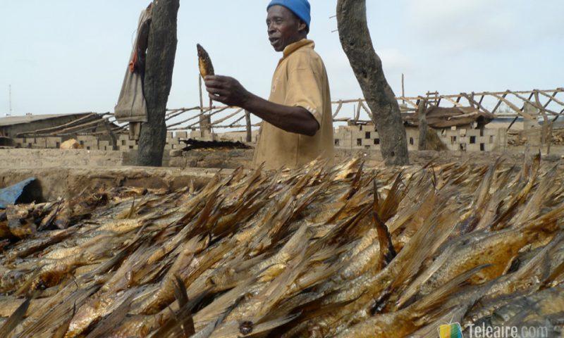 La zona del pescado ahumado es poco recomendable para olfatos sensibles