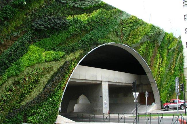 Puente_Max_Juvenal