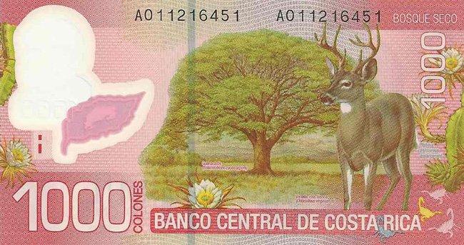1000 colones costarricenses