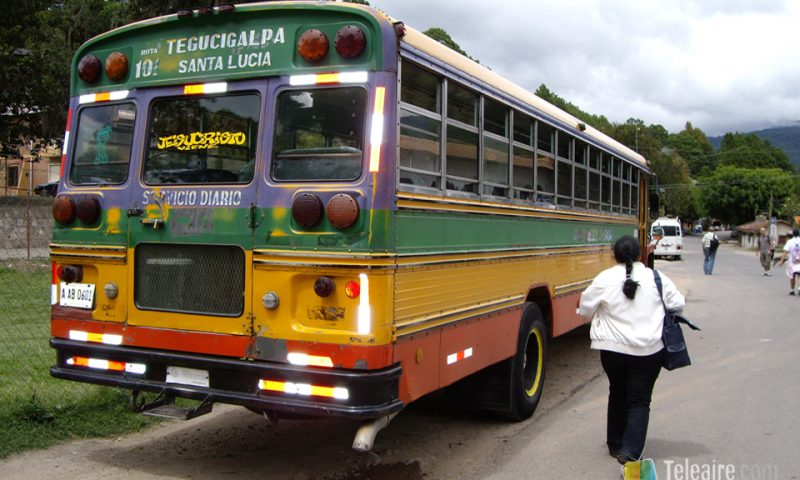 La decoración de los autobuses es todo un espectáculo