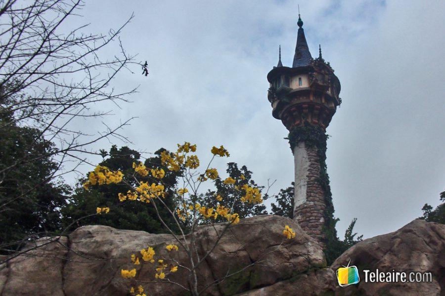 Avistamos la Torre de Rapunzel en lo alto