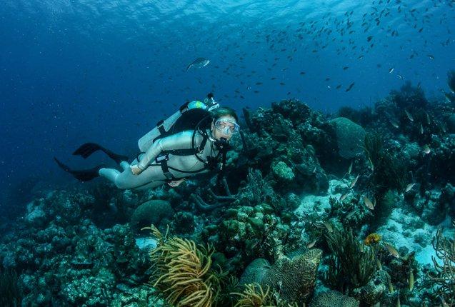 Buceo en las profundidades de la Isla Bonaire