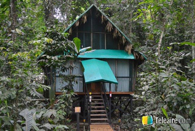refugio en el medio de la jungla de costa rica