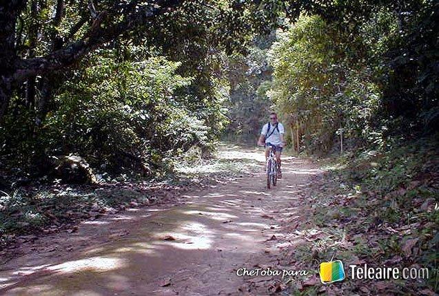 Ilha_Grande_Brasil_Ciclismo