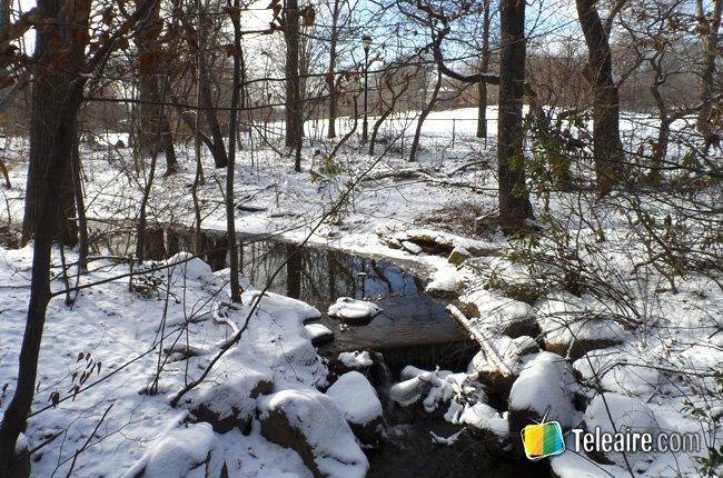 Nueva york en invierno 4