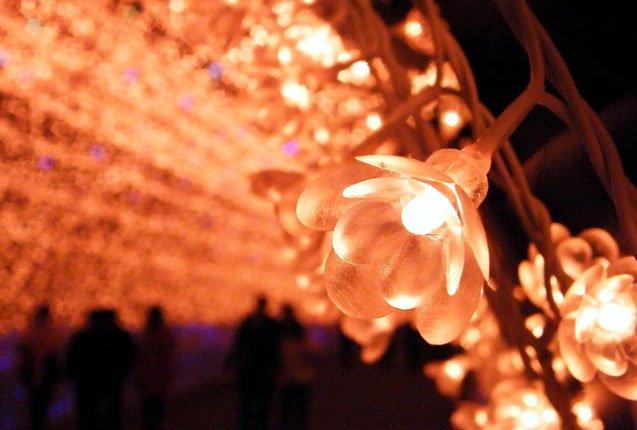 detalle flores del tunel de luces