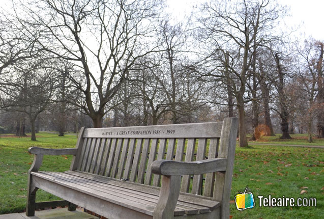 Parque frente a Baker Street