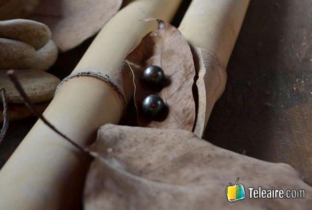 perlas-negras-filipinas
