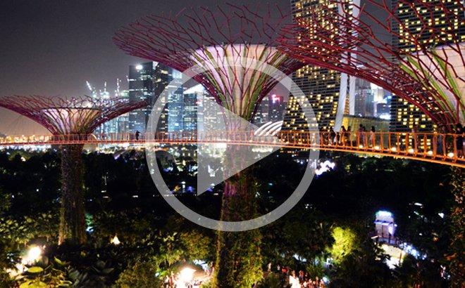 Supertrees en Singapur