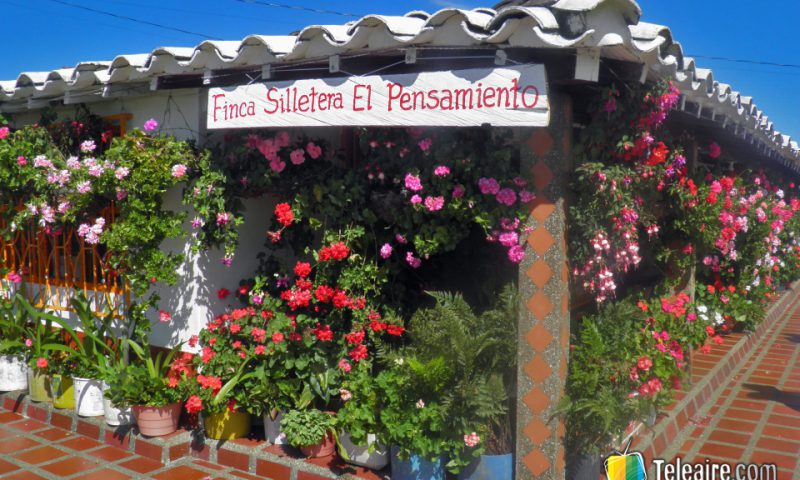Las fincas de Santa Elena son la cuna del desfile de silleteros.