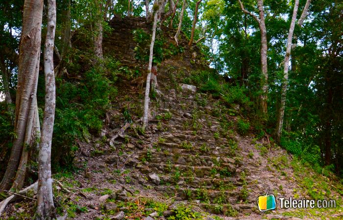 Pirámide maya cubierta por la selva de Guatemala