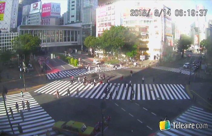 Webcam del Cruce Shibuya en Tokio, Japón