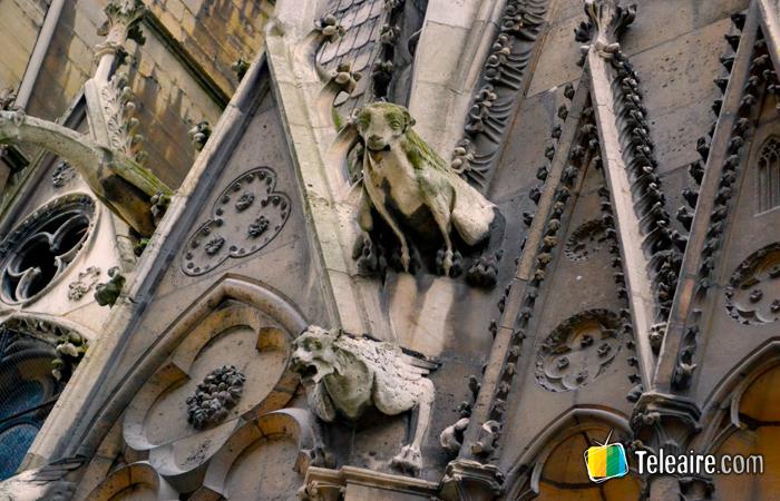 Detalle de alguna de las más de las cincuenta gárgolas que decoran la Catedral de Notre Dame